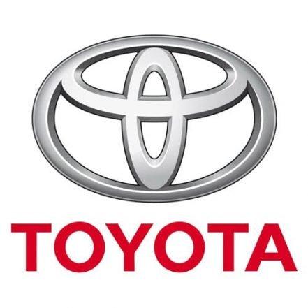 Toyota Gas Struts