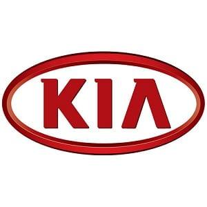 Kia Gas Struts