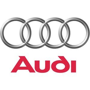 Audi Gas Struts
