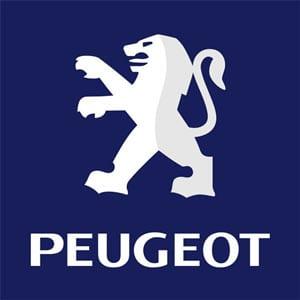 Peugeot Gas Struts